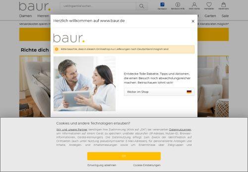 BAUR Website Screenshot