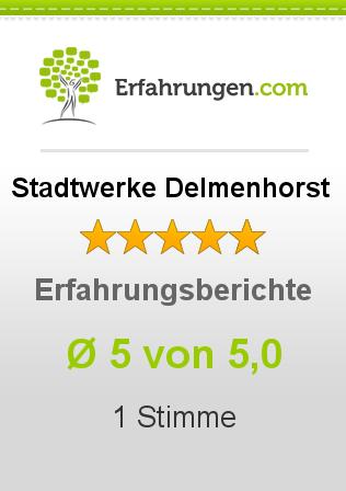Stadtwerke Delmenhorst Erfahrungen